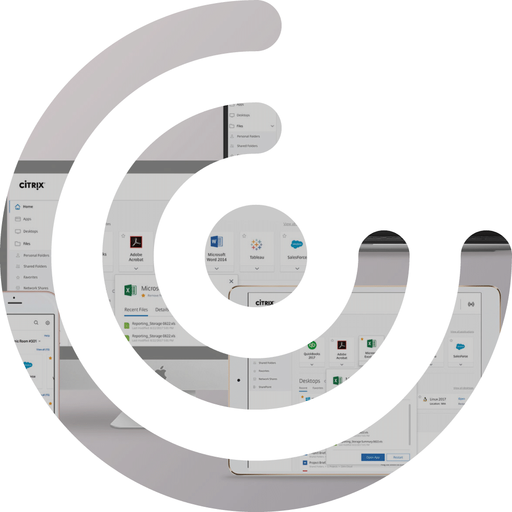 Icon XL of K-net partner, Citrix